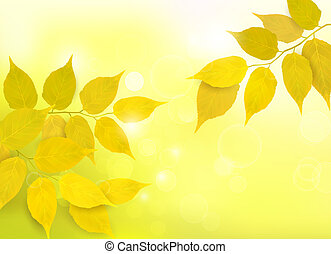 foglie, natura, fondo