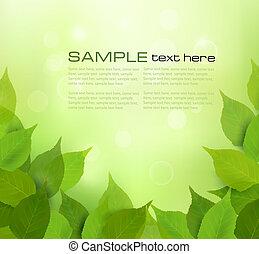foglie, natura, fondo, verde