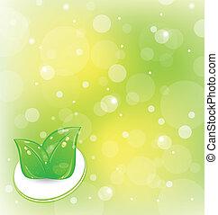 foglie, set, ecologia, fondo