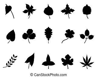foglie, set, nero, silhouette