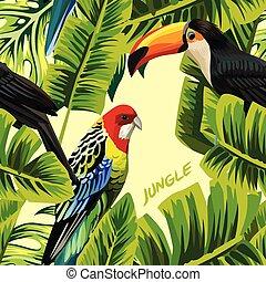 foglie, tucano, giungla, pappagallo, banana
