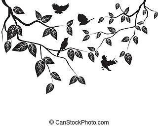 foglie, uccelli
