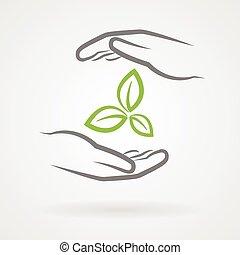 foglie, verde, mani