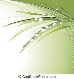 foglie, verde, waterdrops