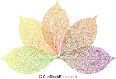 foglie, vettore, autunno