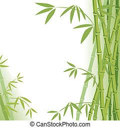 fondo, bambù