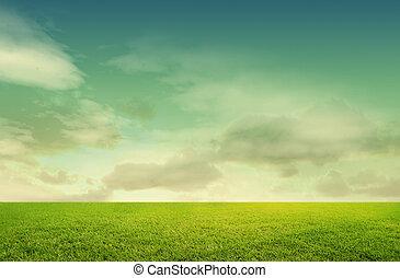fondo, erba, isolato, verde bianco