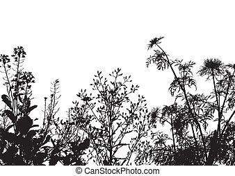 fondo, erba, silhouette