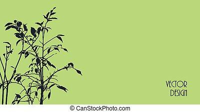fondo, silhouette, pianta