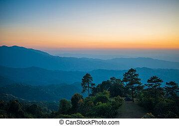 fondo, tramonto, natura, bello