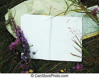 fondo, vuoto, quaderno, erba