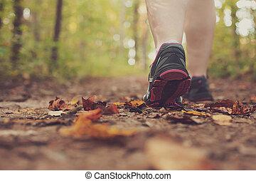 forest., camminare, donna, attraverso