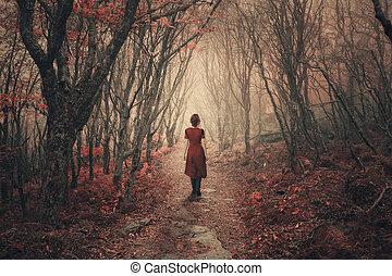 forest., nebbioso, donna