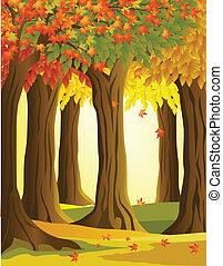foresta autunno