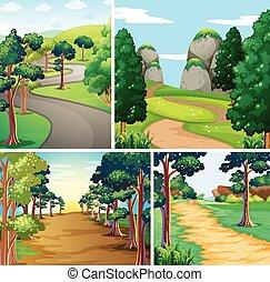 foresta, natura, strade, scena