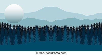 foresta, paesaggio