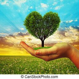 forma cuore, albero, tenere mani