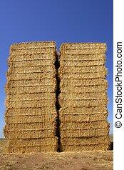 forma quadrata, cereale, pila, colonne, granaio