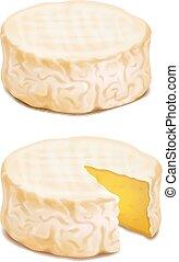 formaggio, camembert, illustrazione, realistico, vettore, block., o, brie, icona