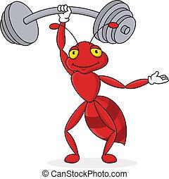 formica, forte, carattere, cartone animato, rosso