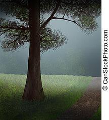foschia, albero