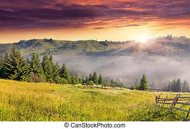 foschia, estate, villaggio, paesaggio, montagna