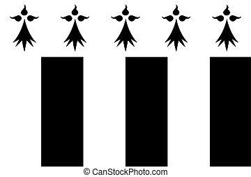 france., vettore, bandiera, rennes, formato