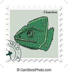 francobollo, camaleonte
