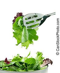 fresco, foglie, insalata