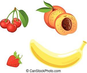 frutta, set., vettore