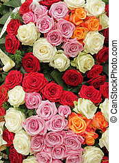 funerale, multicolor, ghirlanda, rose