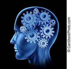 funzione, intelligenza, cervello umano