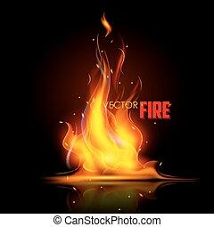 fuoco, realistico, fiamma, urente
