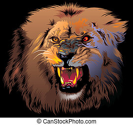 furioso, leone