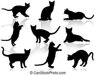 gatti, silhouette