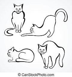 gatti, vettore, collezione