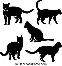 gatto, silhouette, vettore