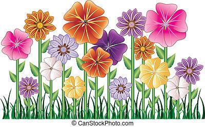 giardino fiore