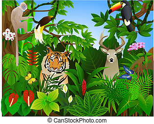 giungla, animale
