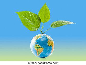 globo, foglie