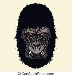 gorilla, arrabbiato, testa