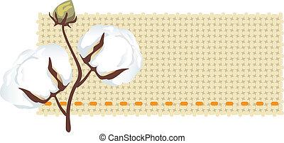 (gossypiu, tessuto, ramo, cotone