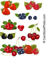 grande, berries., gruppo, fresco