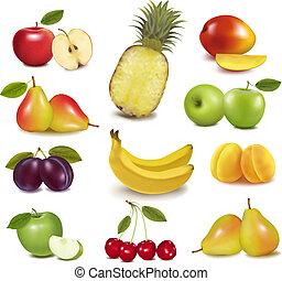 grande, differente, gruppo, fruit., vector.