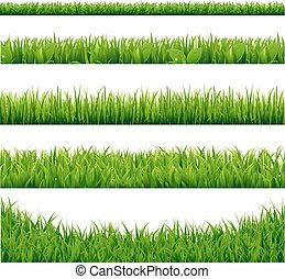 grande, set, erba, verde