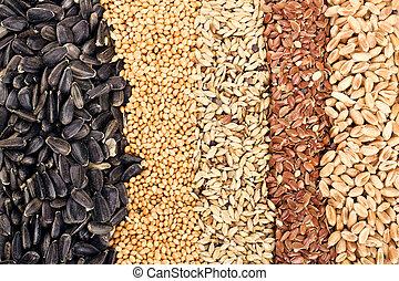 grani, frumento, girasole, lino, segale, orzo, semi, cereale, avena, :