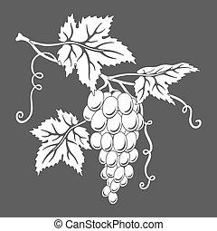 grapes., vettore