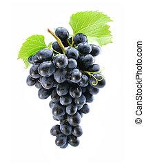 grappolo blu, uva, isolato