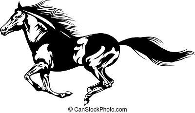 grigio, cavallo