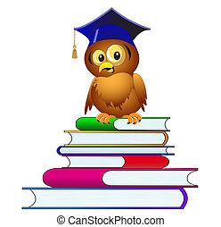 gufo, cappello, mucchio, libri, sedere